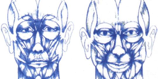 facial-harmonie-energiepunk